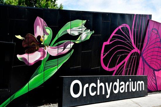 nueva-fachada-de-orchydarium